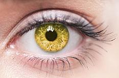 Akupunktur für die Augen in Karlsruhe - Naturheilkundliche Arztpraxis Schleusener